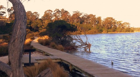 Merimbula Boardwalk1a